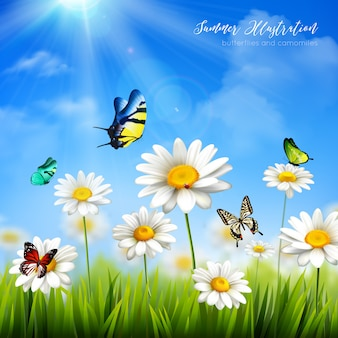 Beautiful colorful butterflies and green grass with camomile flowers background flat vector illustra