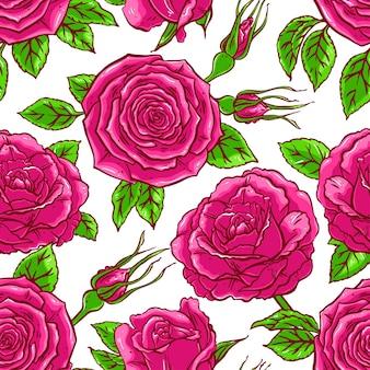 白い背景の上のピンクのバラの美しいカラフルなシームレスな背景。手描きイラスト