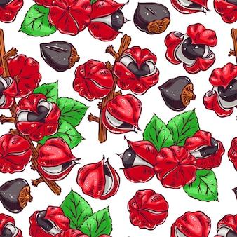Красивый красочный фон гуараны. рисованная иллюстрация