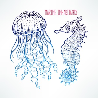 Beautiful cute sketch seahorse and jellyfish. hand-drawn illustration