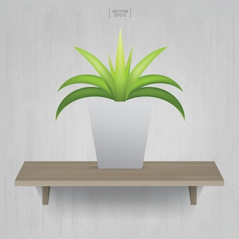 Beautiful decoration plant in flower pot on wooden shelf background. idea for interior design and decoration. vector illustration.