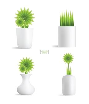 화분에 아름다운 장식 식물