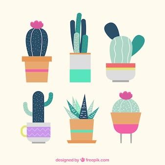 Beautiful decorative cactus in flat design