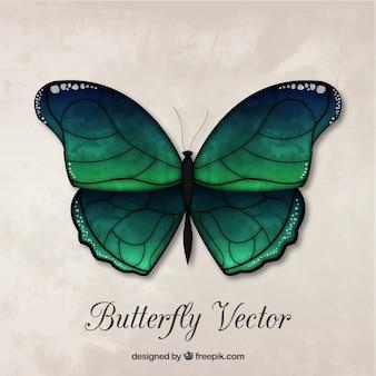 Bella decorazione farfalla verde