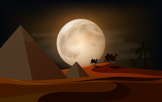 A beautiful desert at night