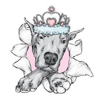Beautiful dog in a crown