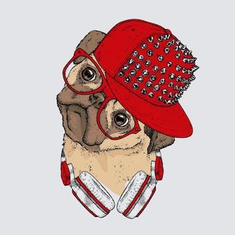 帽子とヘッドフォンの美しい犬