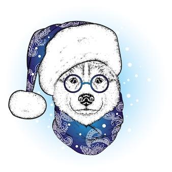 Красивая собака в новогодней шапке и шарфе. новый год.