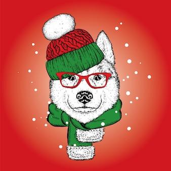 Красивая собака в новогодней шапке и шарфе.