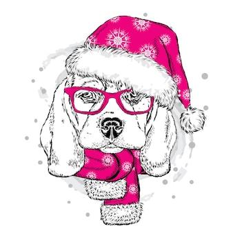 Красивая собака в новогодней шапке.