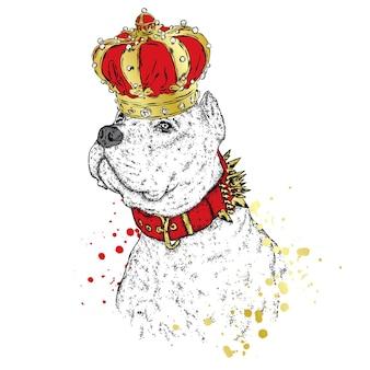 왕관을 쓴 아름다운 개
