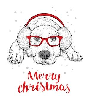 帽子をかぶった美しい犬とサンタクロースの新年とクリスマスのスカーフ