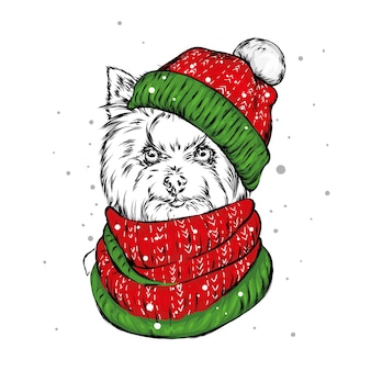 Красивая собака в зимней шапке и шарфе. рождество.