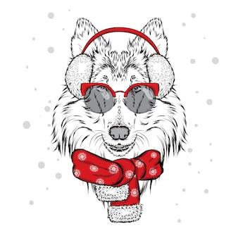 Красивая собака в зимних наушниках.