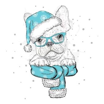 クリスマスの新年の帽子とサンタクロースの美しい犬