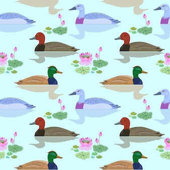 Beautiful duck swimming in pond of lotus flowers pattern.