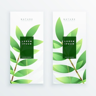 Beautiful eco green leaves vertical banners