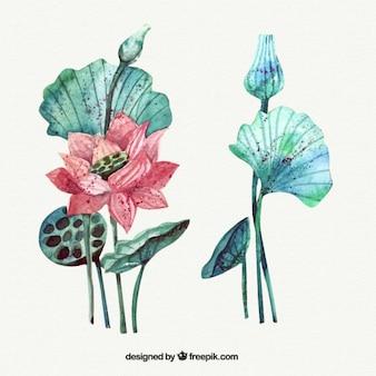 Bel fiore esotico con foglie in effetto acquerello