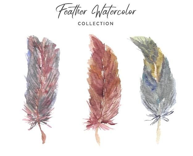 Красивая коллекция перьев бохо акварель