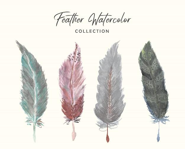 Акварельная коллекция красивых перьев