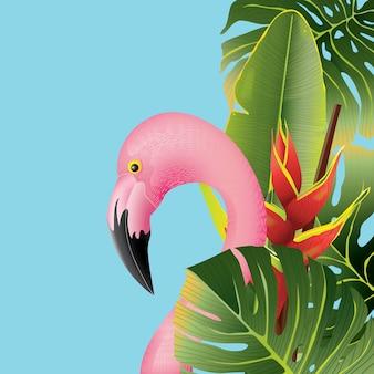 熱帯の美しいフラミンゴは夏のための背景を葉巻します