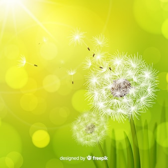 Beautiful floral background in realistic style