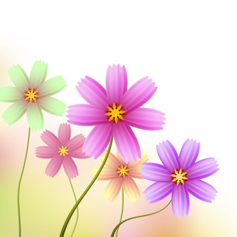 코너 장식 등을위한 아름다운 꽃 테두리