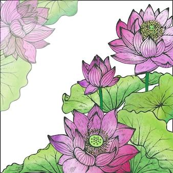 蓮の花と美しい花のフレーム