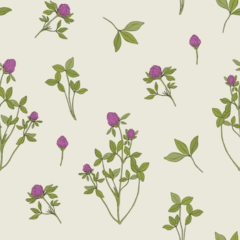 Beautiful floral seamless pattern with red clover on grey
