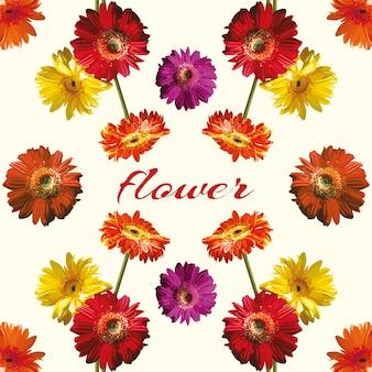 Beautiful flower light background