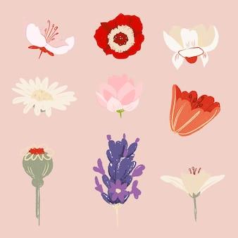Set di illustrazioni colorate con bellissimi adesivi floreali