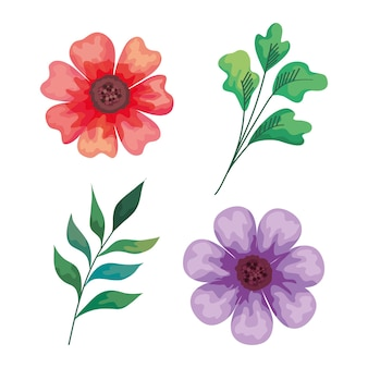 Beautiful flowers and branches decorative icons illustration design