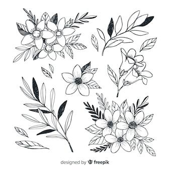 Beautiful flowers collection hand drawn style