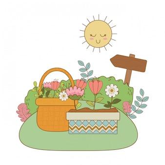 Красивые цветы в горшке и корзина в саду