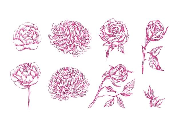 아름 다운 꽃 세트, 손으로 그린 아트. 장식 꽃 요소