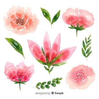 Beautiful flowers watercolor background