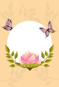 ローズピンクと蝶の美しい花