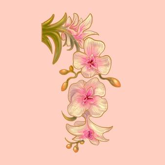 아름다운 그래픽 잎 식물 자연 손으로 그린