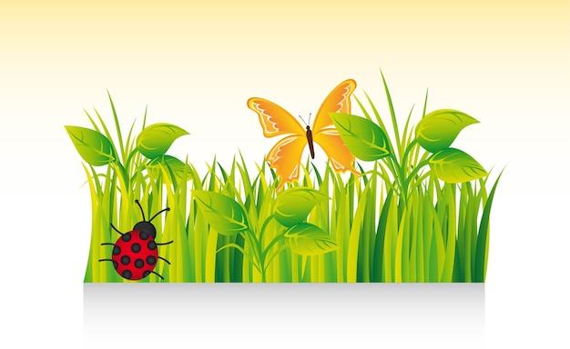 Beautiful grass with ladybug
