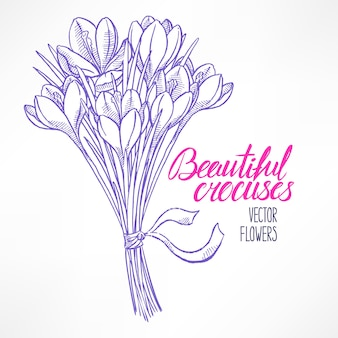 Beautiful greeting card with bouquet of sketch crocuses. hand-drawn illustration