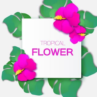 Beautiful greeting card with pink tropical flowers and rectangle frame.