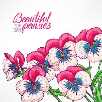 かわいいピンクのパンジーとテキストの場所が付いた美しいグリーティングカード。手描きイラスト
