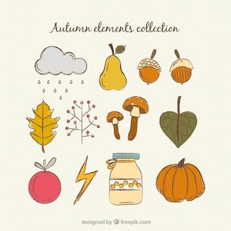 美しい手描き秋の要素