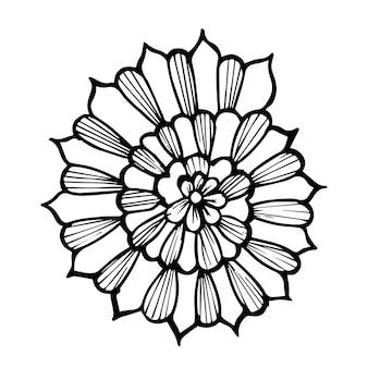 아름 다운 손으로 그린 흑백 조개