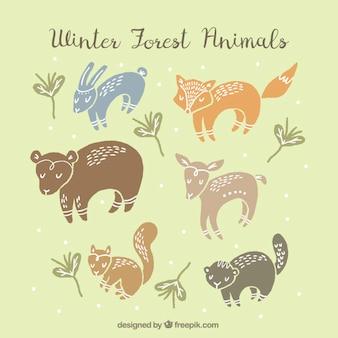 Bellissimi animali della foresta disegnati a mano