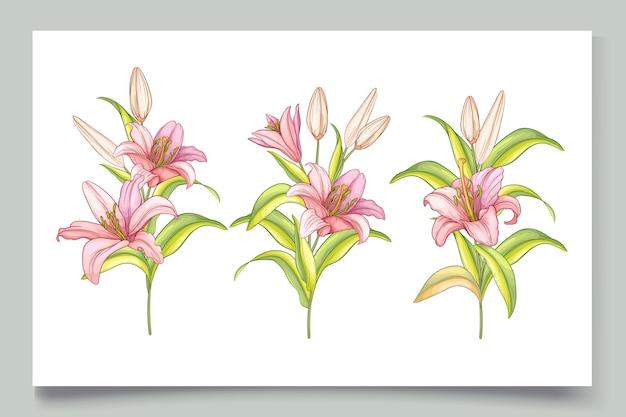 아름다운 손으로 그린 백합 꽃 그림
