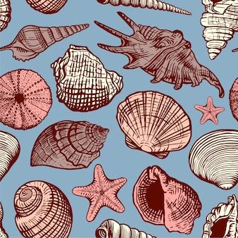 美しい手描きの貝殻のシームレスなパターン。スケッチレトロスタイルの貝殻の海洋背景
