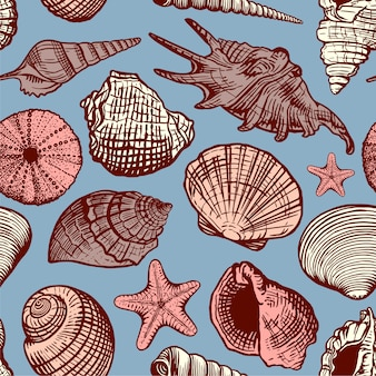 Beautiful hand drawn sea shell seamless pattern. seashell marine background in sketch retro style