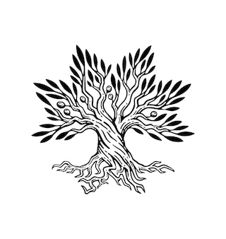 Красивая иллюстрация оливкового дерева и корневого логотипа в винтажном стиле