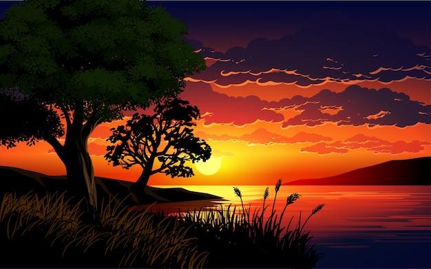 木々や草のある湖に沈む夕日の美しいイラスト